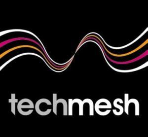Techmesh logo